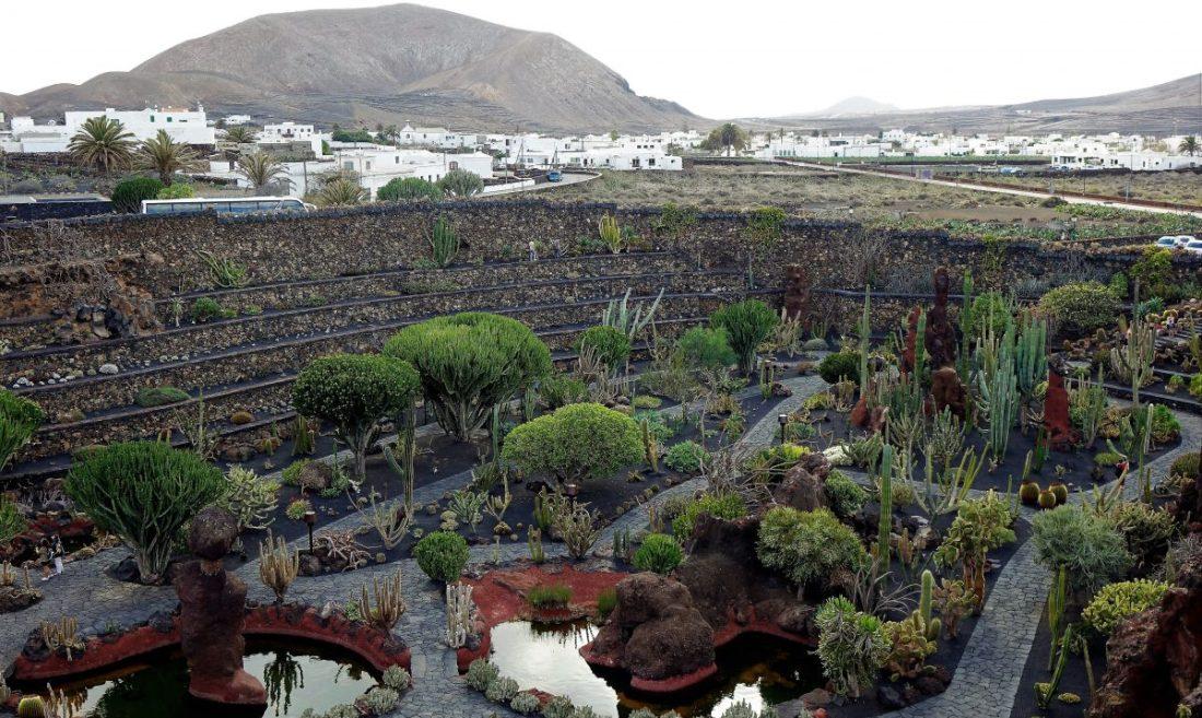 Lanzarote (332)
